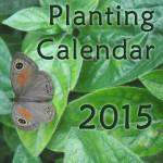 2015-Calendar-cover-mock-up